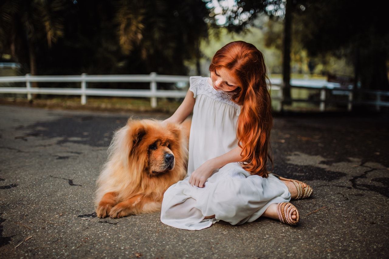 girl in white dress sitting on the ground with a chow chow dog